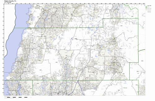 Pasco County, Florida FL ZIP Code Map Not Laminated