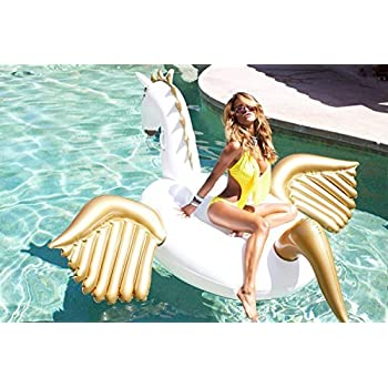 Amazon Com Giant Pegasus Inflatable Pool Floats Luxury