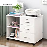 Simple locker Simple modern locker Filing cabinets Bedside storage cabinet Bedside closet-I 70x40x54.5cm(28x16x21)