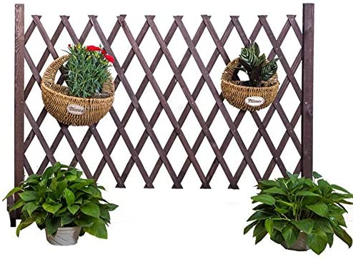 ZHANWEI Valla de jardín Bordura de jardín Césped Patio Retráctil Rastra De Madera Mascota Dividir, 2 Estilos, 3 Colores (Color : A-Brown, Size : 250x120cm): Amazon.es: Jardín