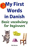 My First Words in Danish: Basic vocabulary for beginners (Learn Danish Book 1)