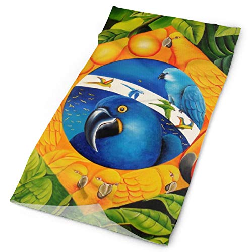Parrot Art Brazil Unisex Fashion Quick-Drying Microfiber Headdress Outdoor Magic Scarf Neck Neck Scarf Hooded Scarf Super Soft -