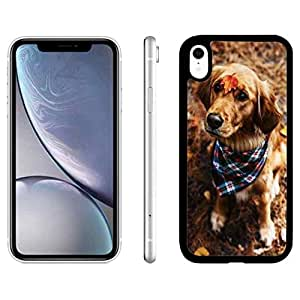Amazon.com: iPhone XR Case Cute Dog,Dog Pets iPhone XR