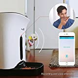 SmartFeeder,WOpet Automatic Pet Feeder for Dog or Cat,Control by Iphone,Andriod or other smart devices (White)