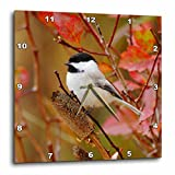 3dRose dpp_84428_1 Black Capped Chickadee Bird, Grand Teton, Wyoming NA02 RNU0409 Rolf Nussbaumer Wall Clock, 10 by 10″ For Sale