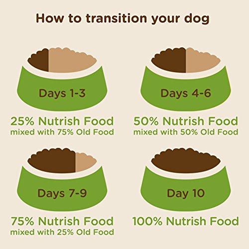 Rachaelray Peak Dog Food Reviews