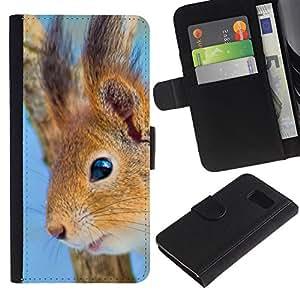 KLONGSHOP // Tirón de la caja Cartera de cuero con ranuras para tarjetas - Feliz Ardilla - Sony Xperia Z3 Compact //