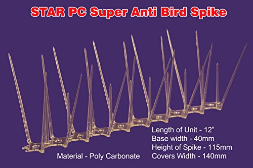 Star Nets Pigeon Control Spikes,Polycarbonate Anti – Bird Spikes (Set Of 10 Pcs)