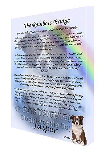 Doggie of the Day Rainbow Bridge Border Collie Dog Canvas Print Wall Art Décor CVS122255 (10x12)