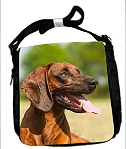 Kleine funda, Cubierta de hombro gebirgsschweißhund bávaro