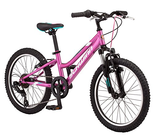 Schwinn High Timber Girl's Mountain Bike, 20-Inch Wheels, Pink