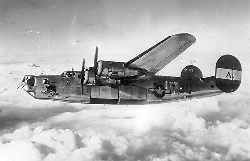 (Home Comforts Laminated Poster B-24 with Nose Art She Devil Consolidated B-24D-30-CO Liberator 42-40123 in Flight, 1944 Vivid Imagery Poster Print 24 x 36 )