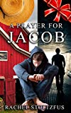 A Lancaster Amish Prayer for Jacob: A Lancaster Amish Home Series (A Lancaster Amish Home for Jacob Book 2)