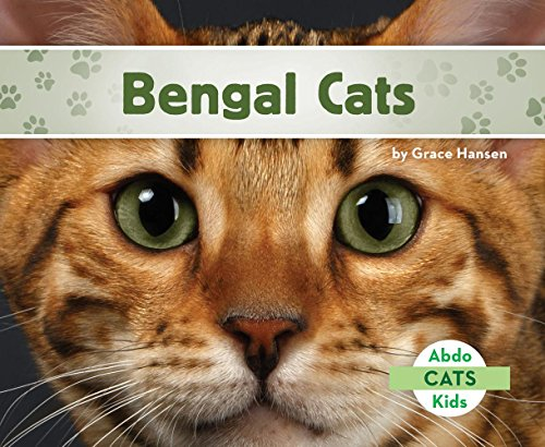 Bengal Cats (Abdo Kids Cats)