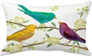 Aremazing Throw Pillow Covers Watercolor Rectangle Abstract Colored Bird Pattern Home Decorative Pillowcase Super Soft Throw Pillow Case Cushion Cover 12 x 20 Inches (F)