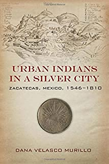 Chiricahua and janos communities of violence in the southwestern urban indians in a silver city zacatecas mexico 1546 1810 fandeluxe Choice Image