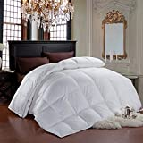 Cheer Collection Luxurious Duvet Insert | Super Plush Goose Down Alternative Full and Queen Size White Comforter - 88'' x 90''