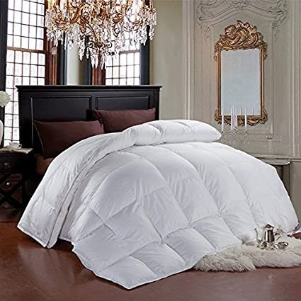 Finest Amazon.com: Cheer Collection Luxurious Duvet Insert | Super Plush  PN18