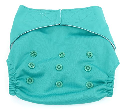Dandelion Diapers Diaper Cover Shell with Hook and Loop, Seaglass by Dandelion Diapers