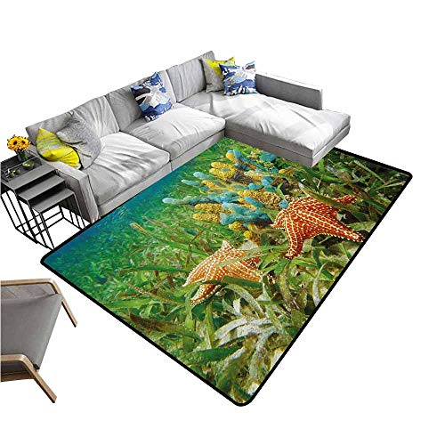 - Bathroom Rug Kitchen Carpet Starfish,Underwater Marine Life with Colorful Sponges and Starfish Surrounded by Seagrass,Multicolor 64