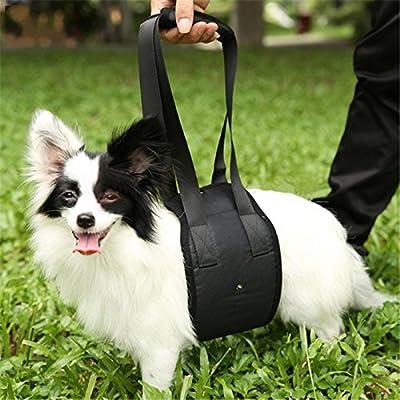 Fully perro Ascensor Harness Andador portabebés arnés del perro ...