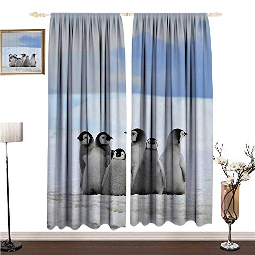 Light Luxury high-end Curtains Sea Animals Decor Collection Young Penguins Picture Background with Snow Pile and Winter Sky Picture Print W96 xL96 Environmental Protection