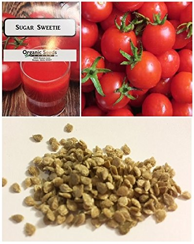 Jayseeds™ Organic Cherry Tomato Sugar Sweetie 50 Seeds #992 Item Upc#650348691486 (Million Sweet Tomato Seeds)