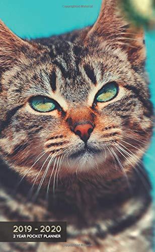 (2019-2020 2 Year Pocket Planner: Monthly Agenda Organiser | Beautiful Tabby Cat (24 Month Calendar))