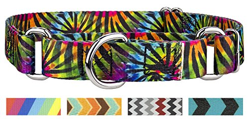 Stripe Martingale Dog Collar - Country Brook Petz Tie Dye Stripes Martingale Dog Collar - Medium