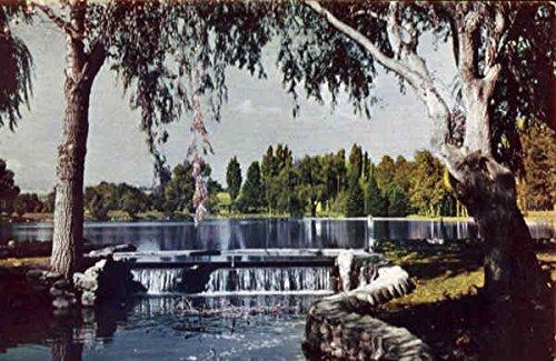(Idlewild Park Reno, Nevada Original Vintage Postcard)