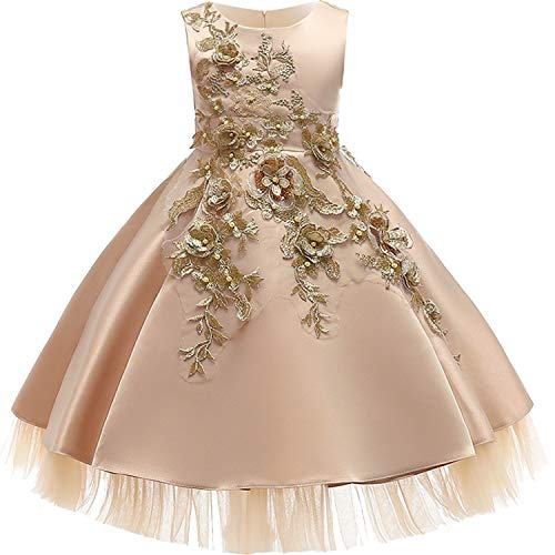 Baby Girls Infant Embroidery Dress Wedding Toddler High-end Dress Flower Dress,D0952-Champagne,10]()