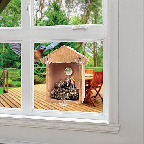 Bazzano Novelty Durable Window Mounted Bird Nest Nesting View Box Wooden -
