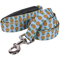 "Yellow Dog Design Pineapples Blue EZ-Grip Dog Leash with Comfort Handle, Large-1"" Wide and 5' (60"") Long"