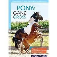 Ponys ganz groß: Originelle Beschäftigungsideen für kleine Pferde