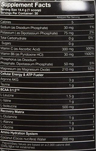 MusclePharm Amino 1 Sport Nutrition Powder, 30 Servings