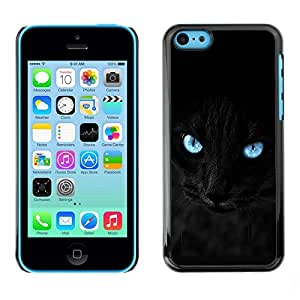 PC/Aluminum Funda Carcasa protectora para Apple Iphone 5C Black Siamese Cat Panther Eyes Pet Feline / JUSTGO PHONE PROTECTOR