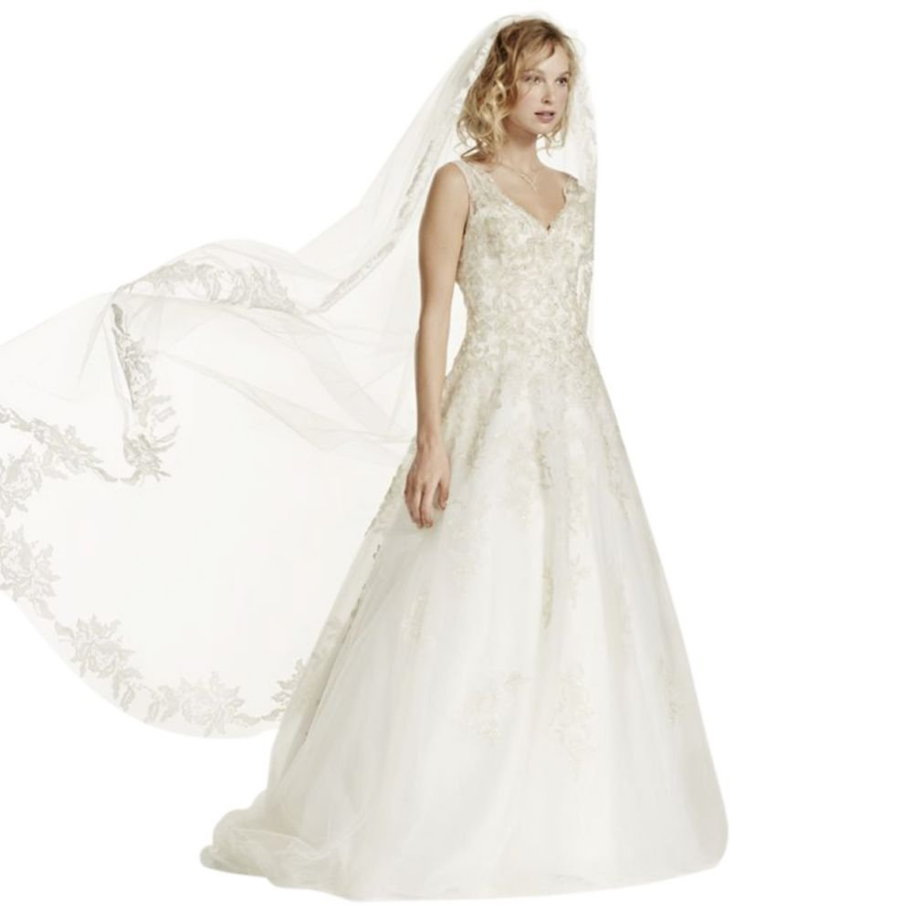 Cathedral Veil with Floral Applique Edge Style WPD16207, NBChampagne