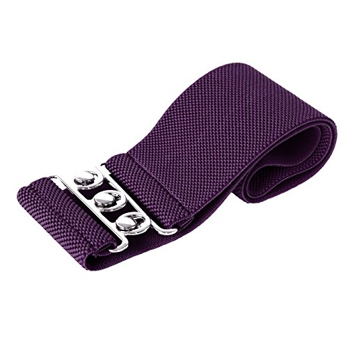 Accessories Fashion Purple (Women's Stretchy Waist Belts for Dresses 3XL CL8962-6)