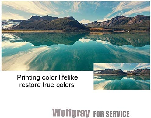 2 Black,2 Tri-Color Work with Canon Pixma MX492 MX490 MG2420 MG2520 MG2920 MG2522 MG2922 IP2820 MG2525 MG3022 MG3020 Wolfgray PG-245XL CL-246XL Ink Cartridges Compatible for Canon PG-245 CL-246 Ink