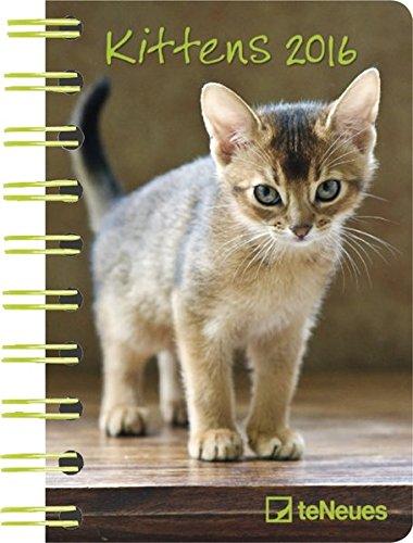 2016 Kittens Deluxe Pocket Engagement Calendar