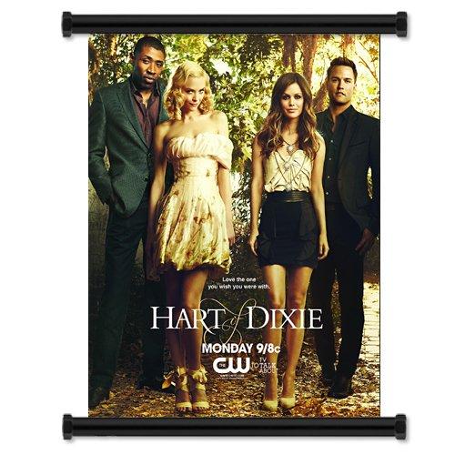 "Hart of Dixie CW TV Show Rachel Bilson Fabric Wall Scroll Poster (16""x21"") Inches"