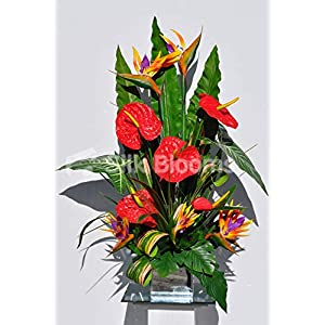 Silk Blooms Ltd Artificial Red Fresh Touch Anthurium and Bird of Paradise Arrangement w/Stripy Leaves
