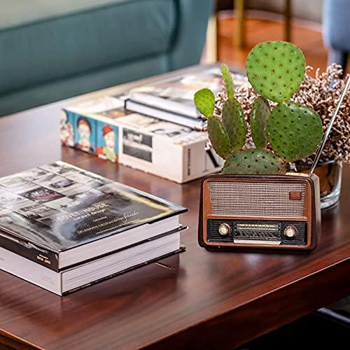 Mortilo Personalized Conch/Retro Radio Camera Resin Flowerpots Planter, Mini Creative Flower Pot Garden Home Crafts Ornaments, Outdoor Indoor Spaces Great Gift for Home Garden Decor (C)