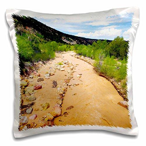 3dRose Jos Fauxtographee- River in Fiddlers Canyon - The river that runs through Fiddlers Canyon in Cedar City Utah - 16x16 inch Pillow Case (Cedar Run Throw)