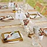 Shappy 12 Packs Table Number Card Holders with