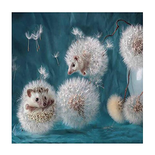 Yunhigh 5D Diamond Painting, Dandelion Hedgehog Diamond Painting Cross Stitch Rhinestone Embroidery Art Craft Needlework Home Decor Gift Animal(3030CM)
