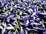 Organic Dried Butterfly Pea Thai Herbals Blue Tea 20 Kilograms (20Kgs)