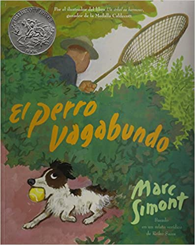 Book Perro Vagabundo, El (the Stray Dog) with CD (Picture Book Read Alongs)