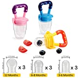 infant baby food - Biubee 3 Pack Baby Food Feeder with 9 Different Size Nipples(3 for S, 3 for M, 3 for L), Silicone Fresh Fruit Feeder Nibbler Teether Food Mesh for Infant & Toddlers Including All Size
