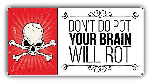 - Anti Drug Grunge Slogan Don't Do Pot Your Brain Will Rot Vinyl Decal Bumper Sticker 6'' X 3''